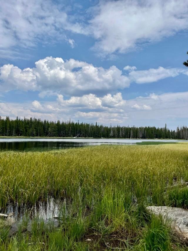 Hiking Bierstadt Lake Loop Trail