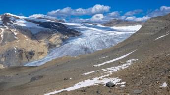 Daly-Glacier