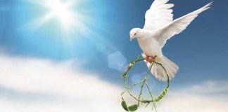 A reflection on peace and conflict