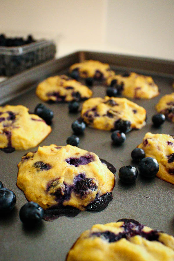 Level view of lemon blueberry coconut cookies on a baking sheet