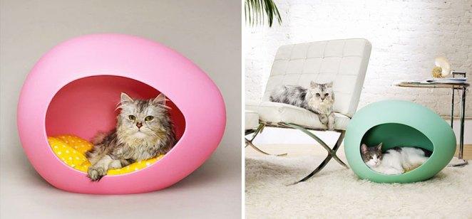 kedi yumurta yatak