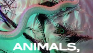 Maroon-5---Animals-_Lyric-Video_