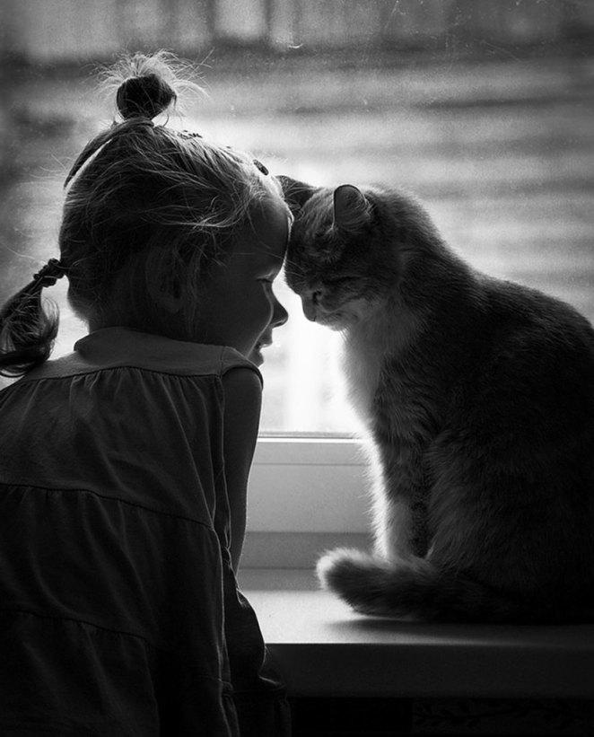 kız çocuk ve kedi