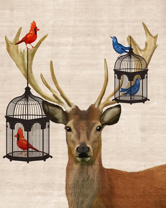 kuş ve geyik