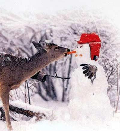 İlginç kardan adamlar2