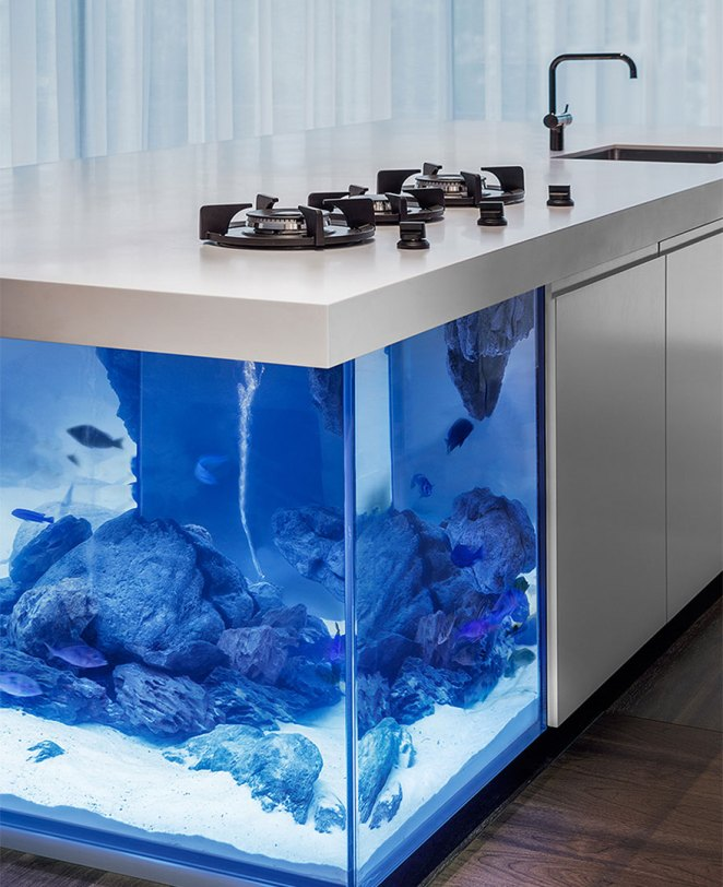 mutfak akvaryum