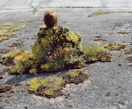 riittaikonen- ağaç bitki  doğal giysi 5