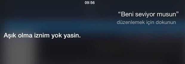 Siri geyikleri 4