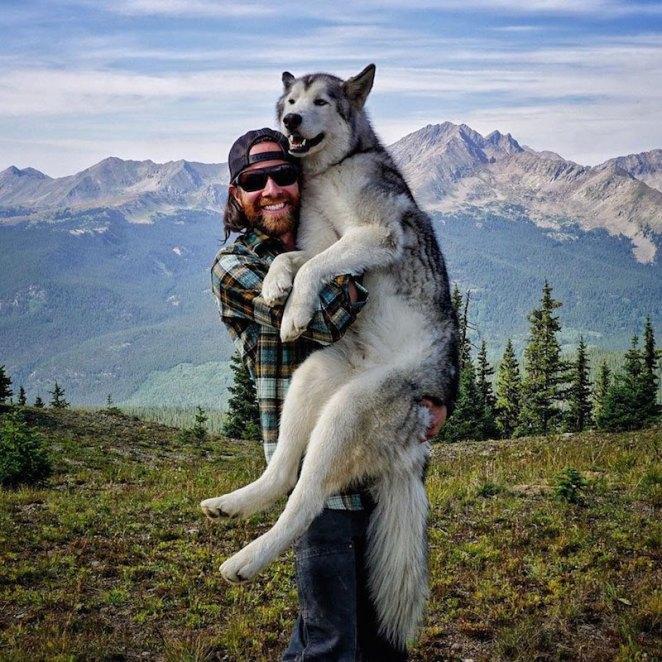 Loki-Kelly-Lund-Maceracı-Köpek-2-