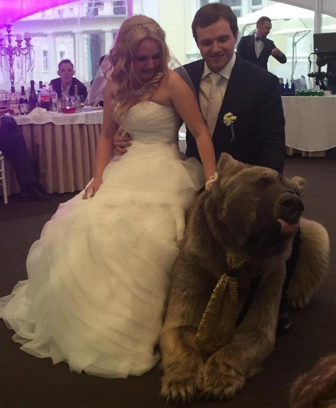 ayıcık düğün