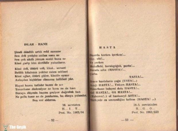 Akıl Hastalarının Yazdıkları Şiirler 5