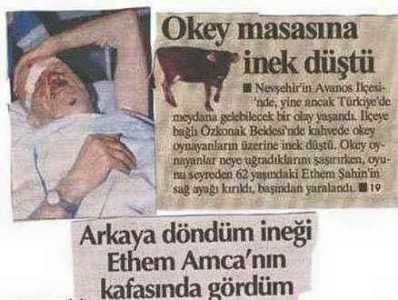Türkiyeden ilginç garip komik haberler 4