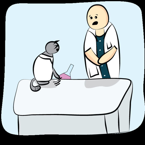 bilim insanı kedi