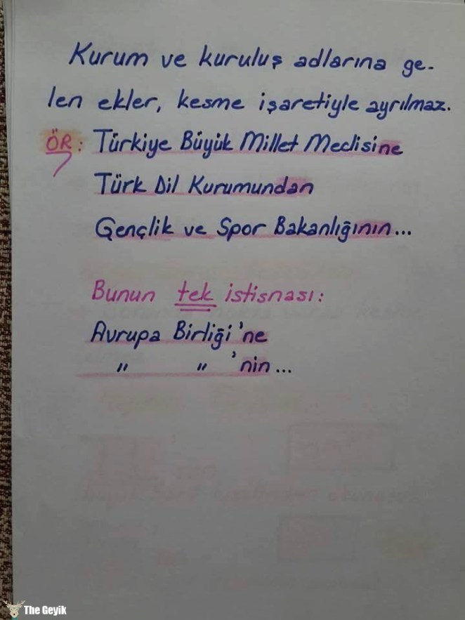 dilbilgisi7
