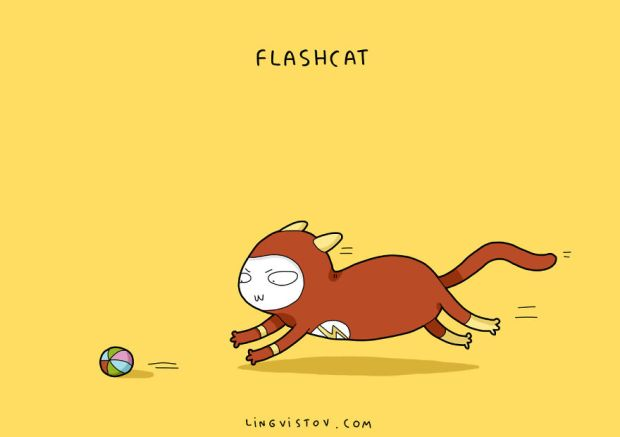 if-cats-were-super-heroes-8__880