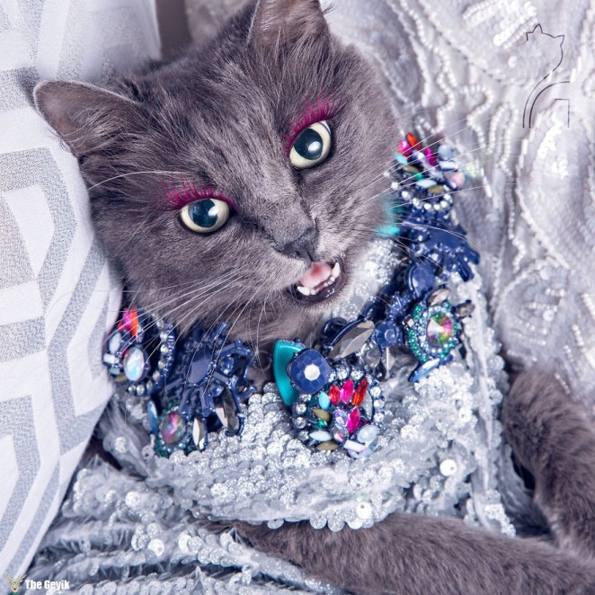 pitzush-glamour-pussycat-11
