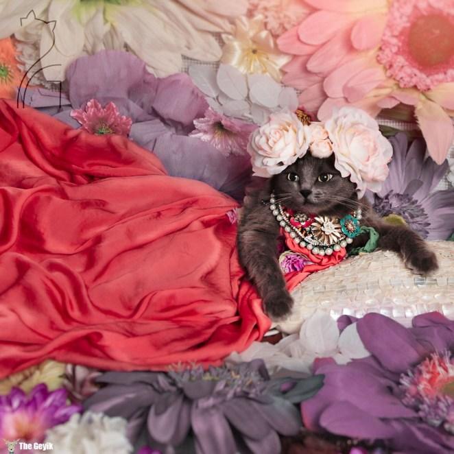 pitzush-glamour-pussycat-7