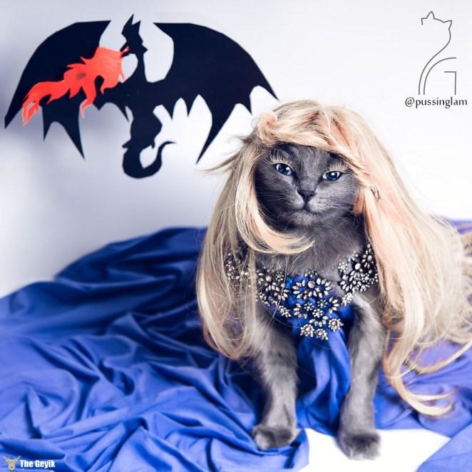 pitzush-glamour-pussycat-9