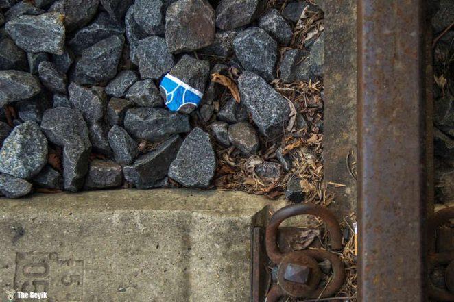 Andre Levy çıplaklık karşıtı taş boyama 11