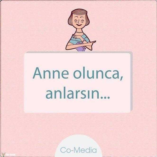 anne8