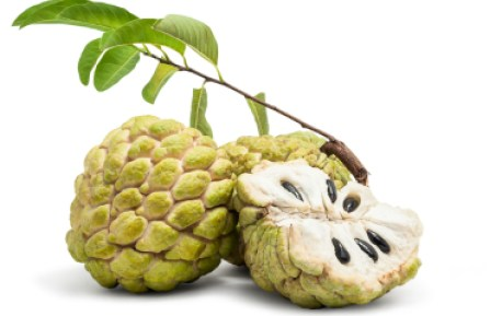 Fresh Custard Apple Isolated in White Background