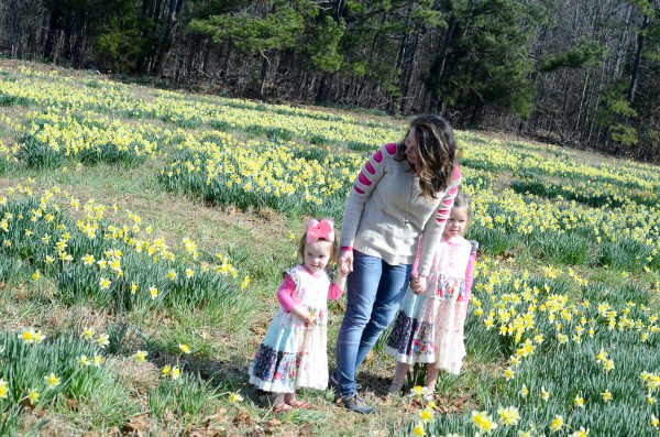 Wye Mountain Daffodil Festival What We Wore