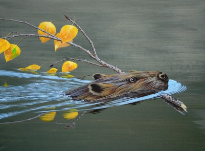 Busy Beaver by Turenne