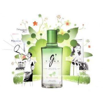 Floraison gin by G'Vine