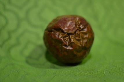 """Alt=""""Passion Fruit"""""""