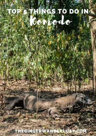 Top 5 Things to do in Komodo (2)