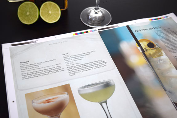 Varuna-Cocktail-Book-Preview