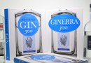GIN is out in Italian and Spanish!