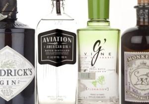 New Western Gin