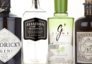 What is New American or New Western Gin?