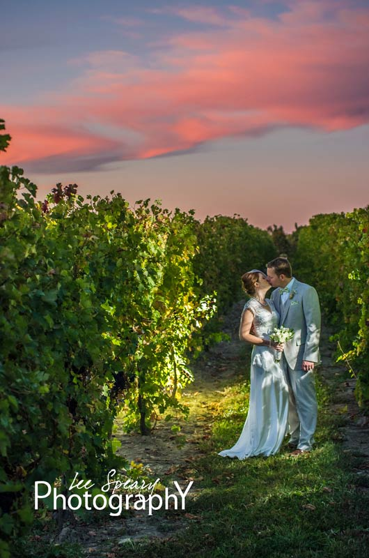 Kissing in the vineyard under a pink sky