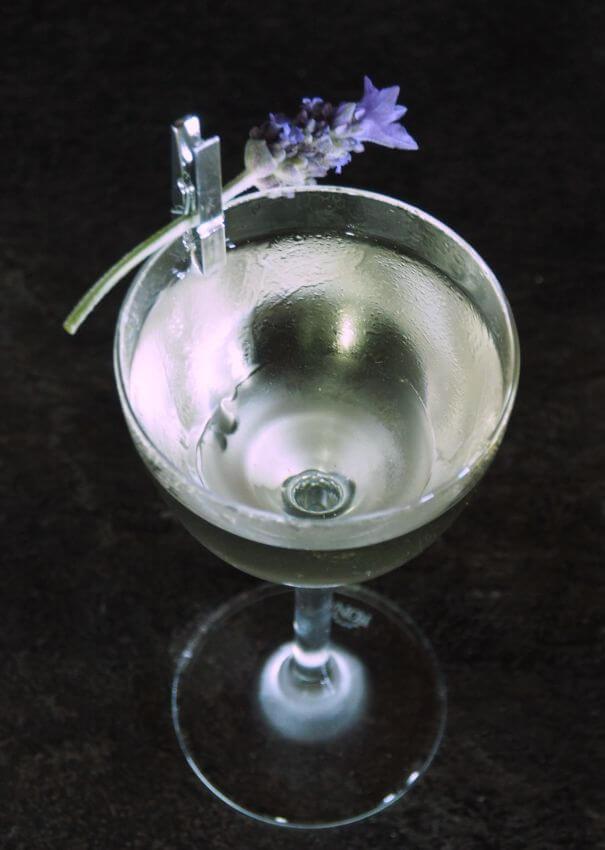 bloom-gin-martini