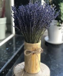 Lọ hoa lavender - Oải hương khô Pháp
