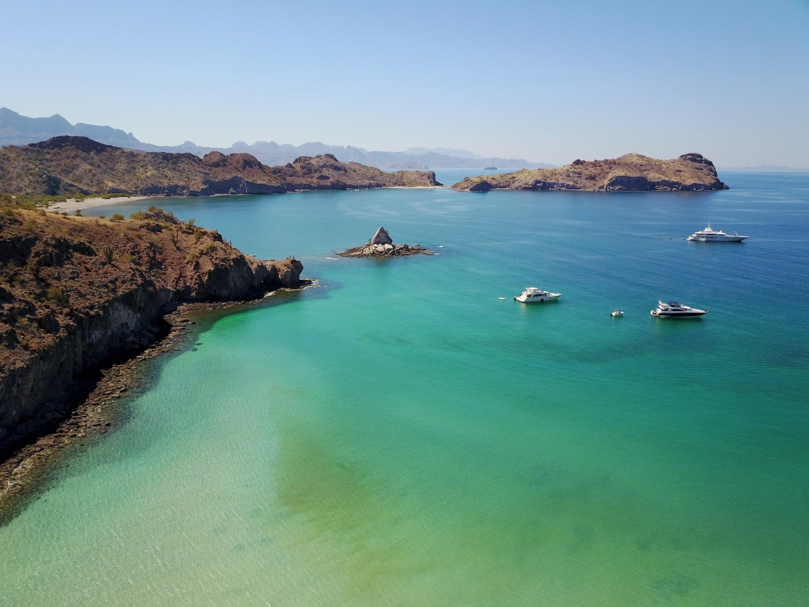 THE SEA OF CORTEZ