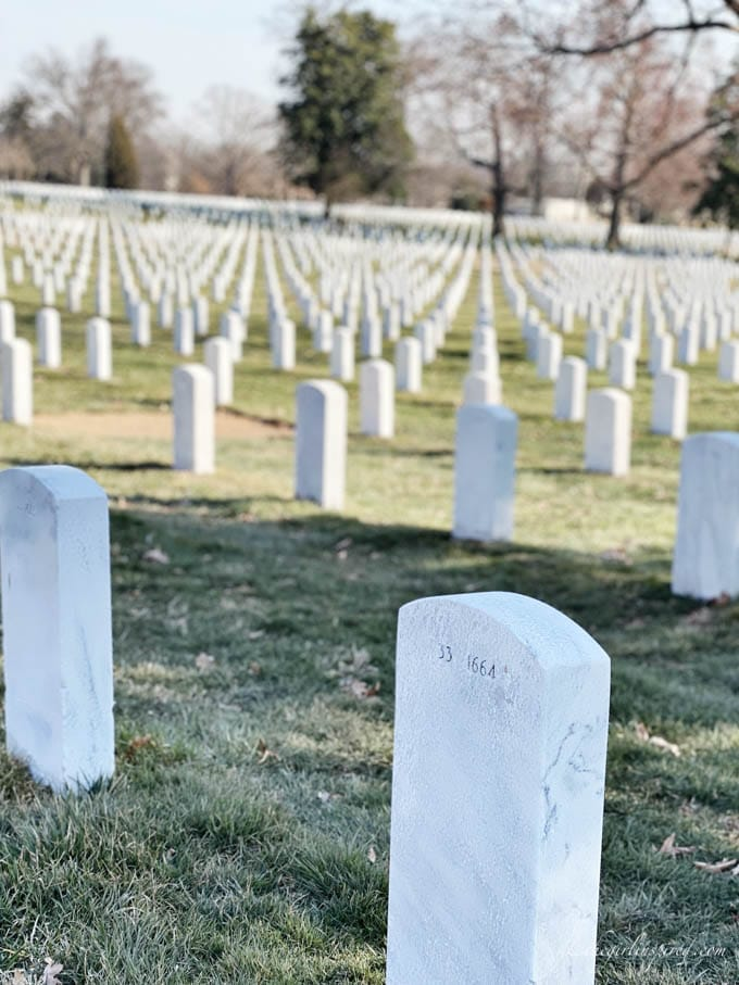 cemetery grass and rows of white headstones