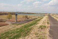 Koga Park discovered near the river