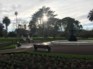 Cute park in Auckland