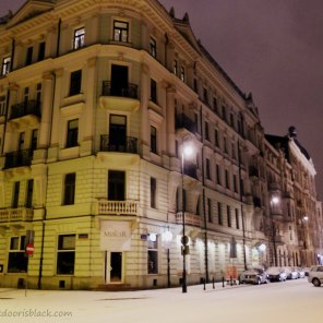 Warsaw after snow   The Girl Next Door is Black