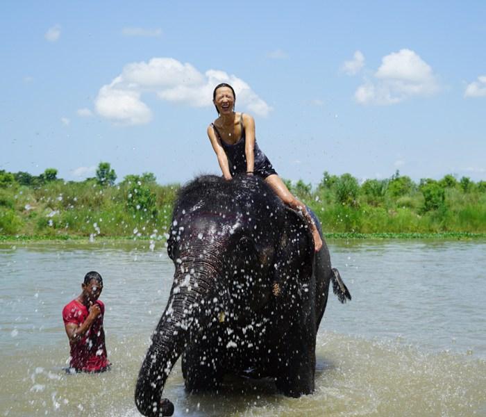 尼泊爾奇旺國家公園叢林探險