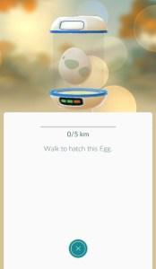 Egg in incubator