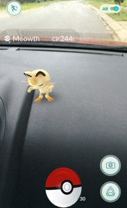 Augmented Reality: a Meowth on my dash
