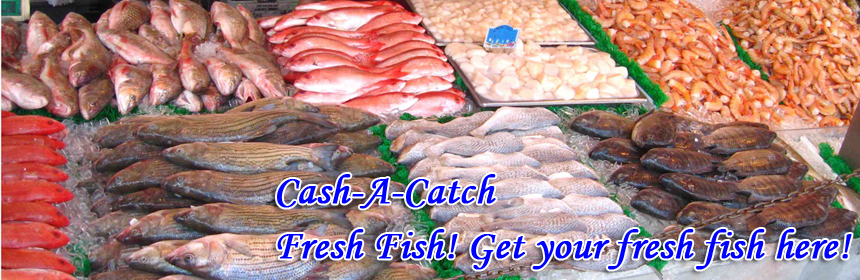 Cash-A-Catch - Fresh Fish! Get your fresh fish here!