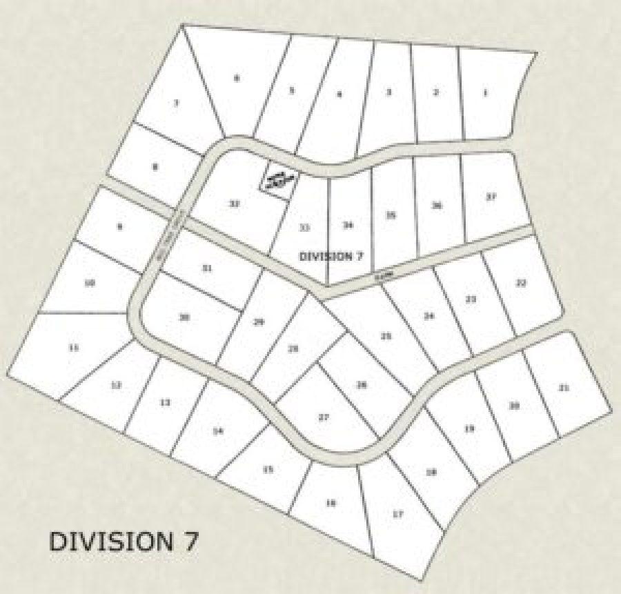 division7-newsite
