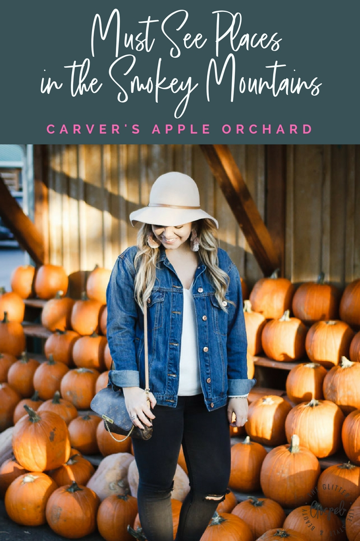 The Glitter Gospel Blog Fall Outfit For the Pumpkin Patch at Carver's Apple Orchard. Oversized Denim Jacket, Target Booties, Louis Vuitton Favorite MM, Wool Floppy Hat