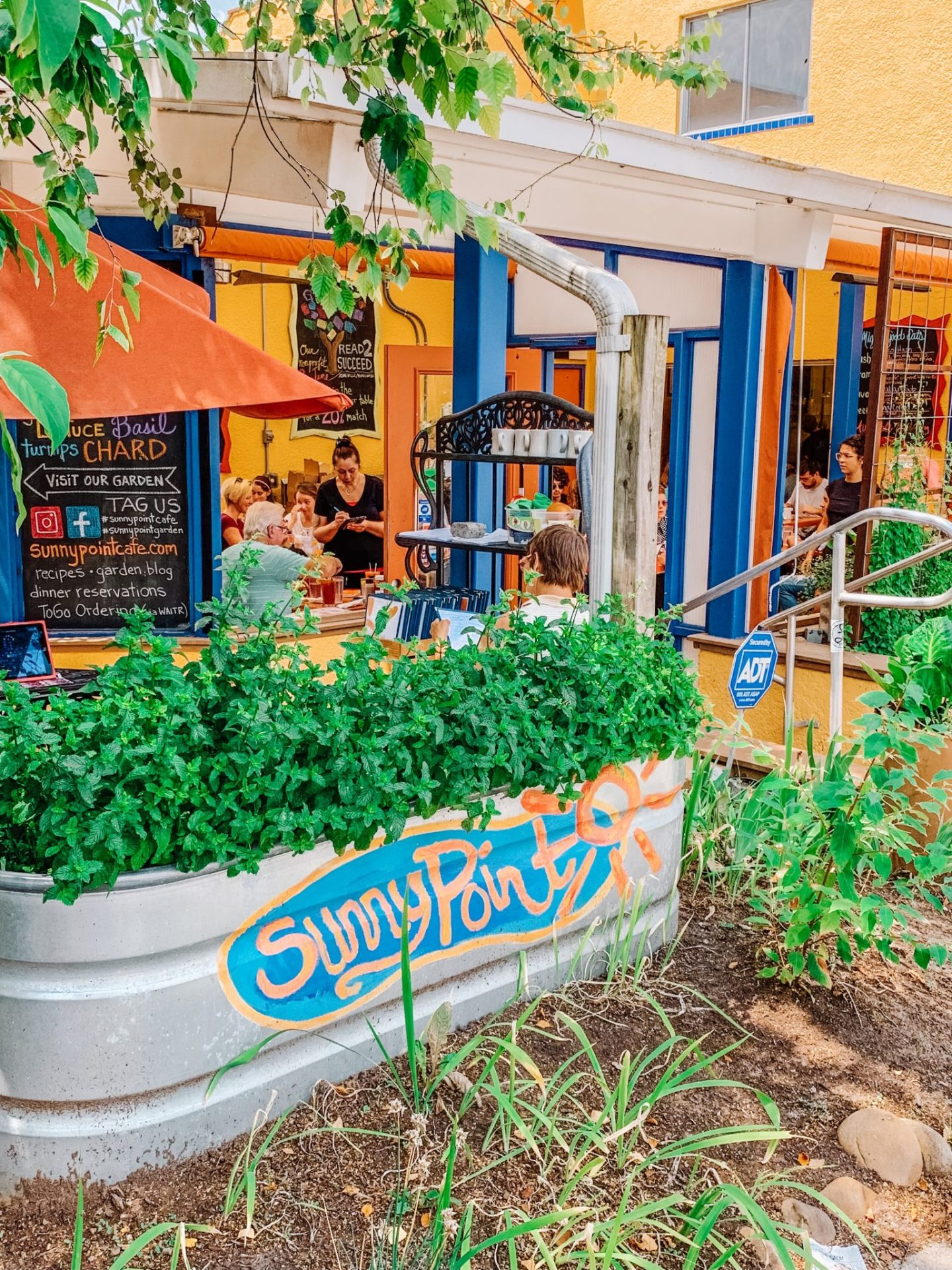 West Asheville NC, Asheville, Graham House Asheville, WALK Asheville, Flora Asheville, Sunshine Sammies, Sunny Pointe Cafe, New Belgium Asheville, Simple Juice West Asheville, 828, North Carolina Travel Guide ,Patricia Nash Yellow Bag