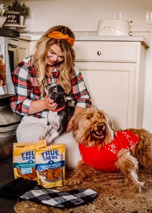 Tyson true chews, gifts for your pets, holiday gift ideas, goldendoodle, french bulldog, stocking stuffer ideas.